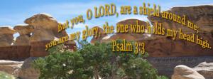 Psalm3